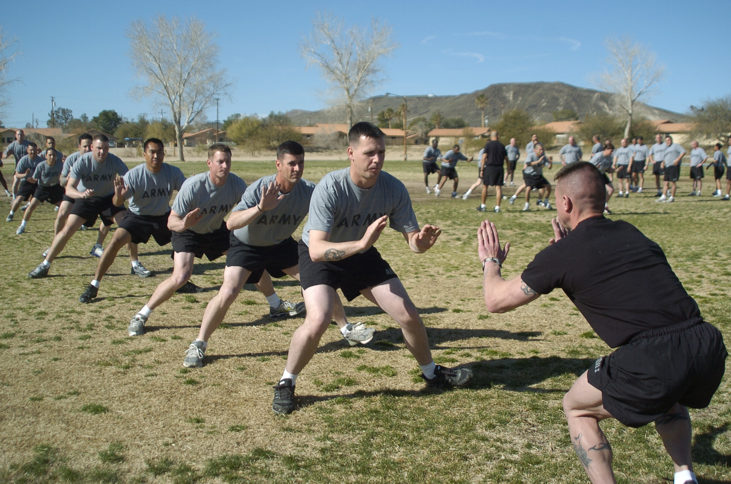 Prt: the army's new road map for physical readiness   article.