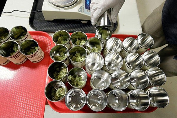In this photo taken Tuesday, Jan. 13, 2015, marijuana is measured in 3.5-gram amounts and placed in cans for packaging at the Pioneer Production and Processing marijuana growing facility in Arlington, Wash. Elaine Thompson/AP