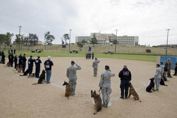 Military and civilian police K-9 handlers gather for the presentation of colors and the National Anthem before the 2014 Defenders K-9 Trials May 17, 2014, at Travis Air Force Base, Calif.