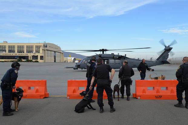 Federal, state and local K-9 teams prepare to board a California Air National Guard helicopter at Coast Guard Air Station San Francisco, Wednesday, Dec. 2, 2015 to prepare for Super Bowl 50. (Photo: Lt. j.g. Evan Wilcox)