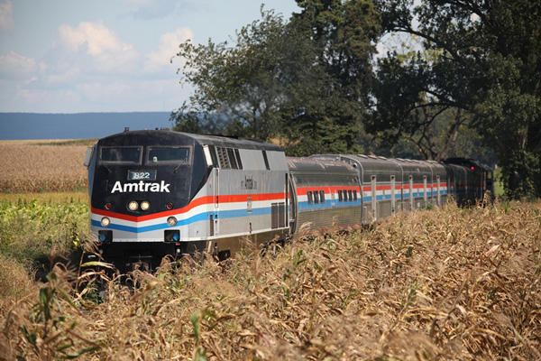 Amtrak train in field.
