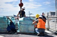 The crew of the Coast Guard Cutter Tahoma (WMEC-908) offloaded approximately 6 tons of cocaine seized in the Eastern Pacific Ocean were offloaded Monday, Sept. 17, 2018 in Port Everglades. The drugs, worth more than an estimated $170-million, represent drugs seized from six suspected smuggling vessels interdicted by crews from Tahoma and two other Coast Guard cutters between late July and August. (U.S. Coast Guard photo/Brent Sargent)