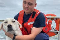 Seaman Tristan Beatty comforts a dog after the boat he was in capsized near Cedar Beach, New York, Oct. 6, 2018. The dog, along with a 47-year-old man and a boy were rescued by a boatcrew from Station Fire Island. (U.S. Coast Guard photo courtesy of Station Fire Island)