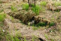 A 1st Battalion, 175th Infantry, soldier practices camouflage, cover and concealment with the Flame Resistant Ghillie Suit, or FRGS, during training at Fort A.P. Hill, Va., in November 2012. (Army photo)