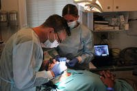 Military retiree dentists (A. Sean Taylor/U.S. Army Reserve)